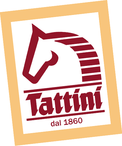 Tattini Riding Romania logo